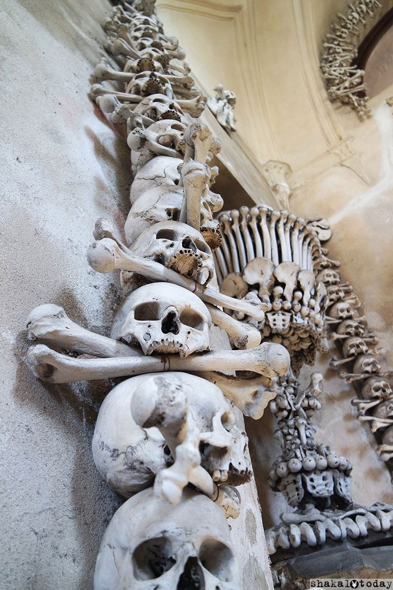 Нашлось место и «скелетному декору»