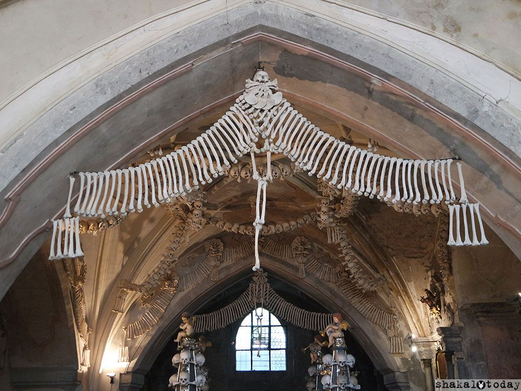Аккуратно и красиво развесить 40 000 скелетов было непросто!