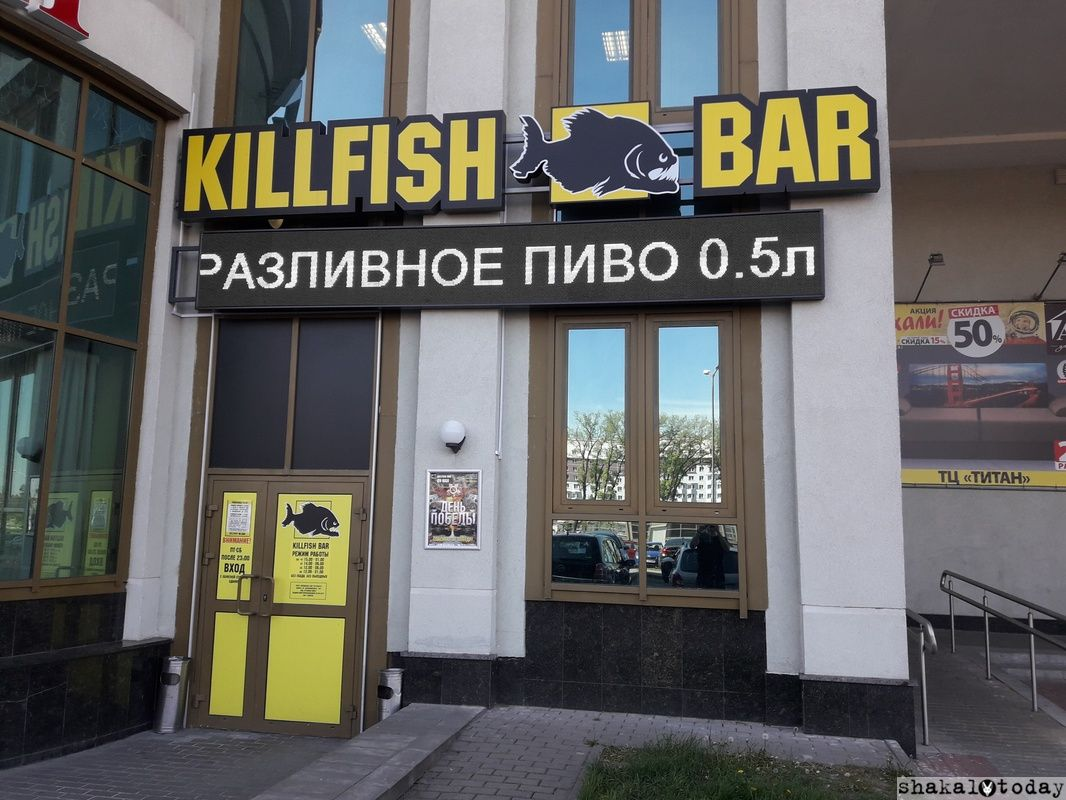 Killfish Shakal Today Main