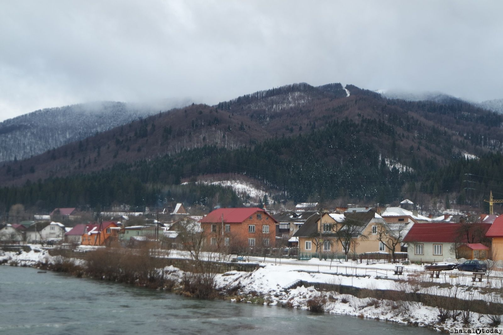 Shakal-Today-Scole-009.JPG