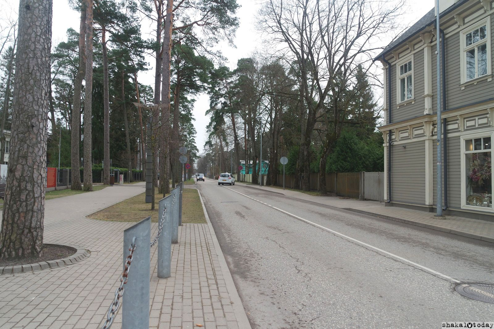 jurmala-shakal-today-0025.jpg