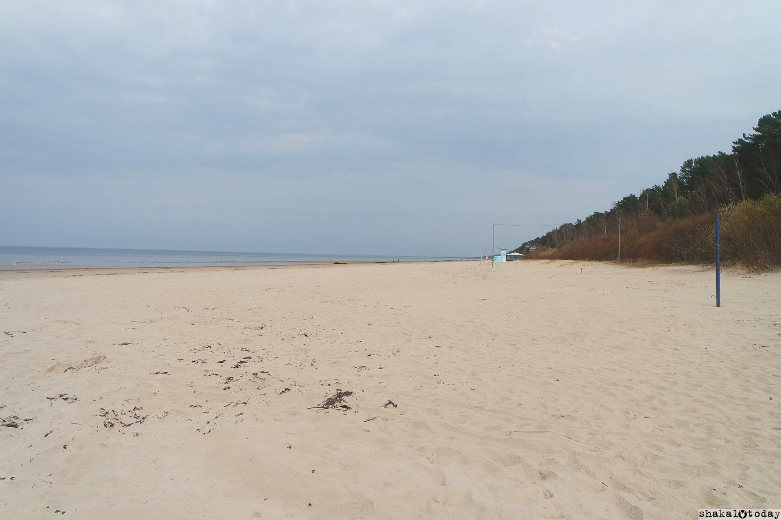 jurmala-shakal-today-0035.jpg