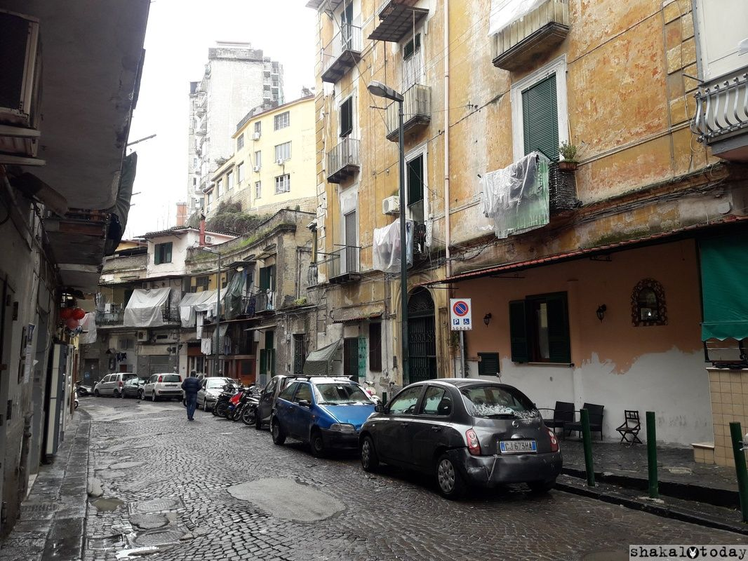 Naples-Shakal-Today-014.jpg