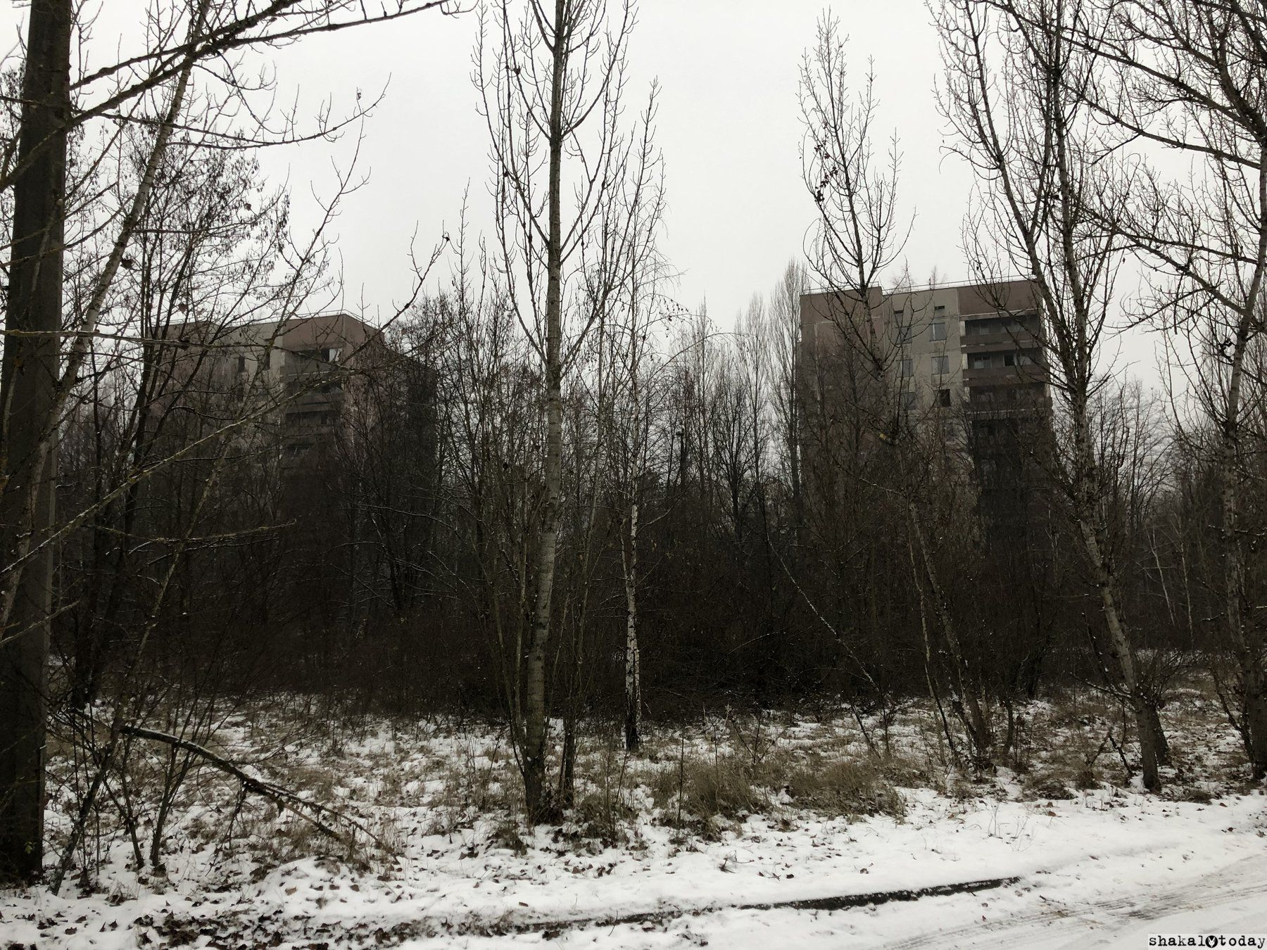 Shakal-Today-Pripyat-0009.JPG