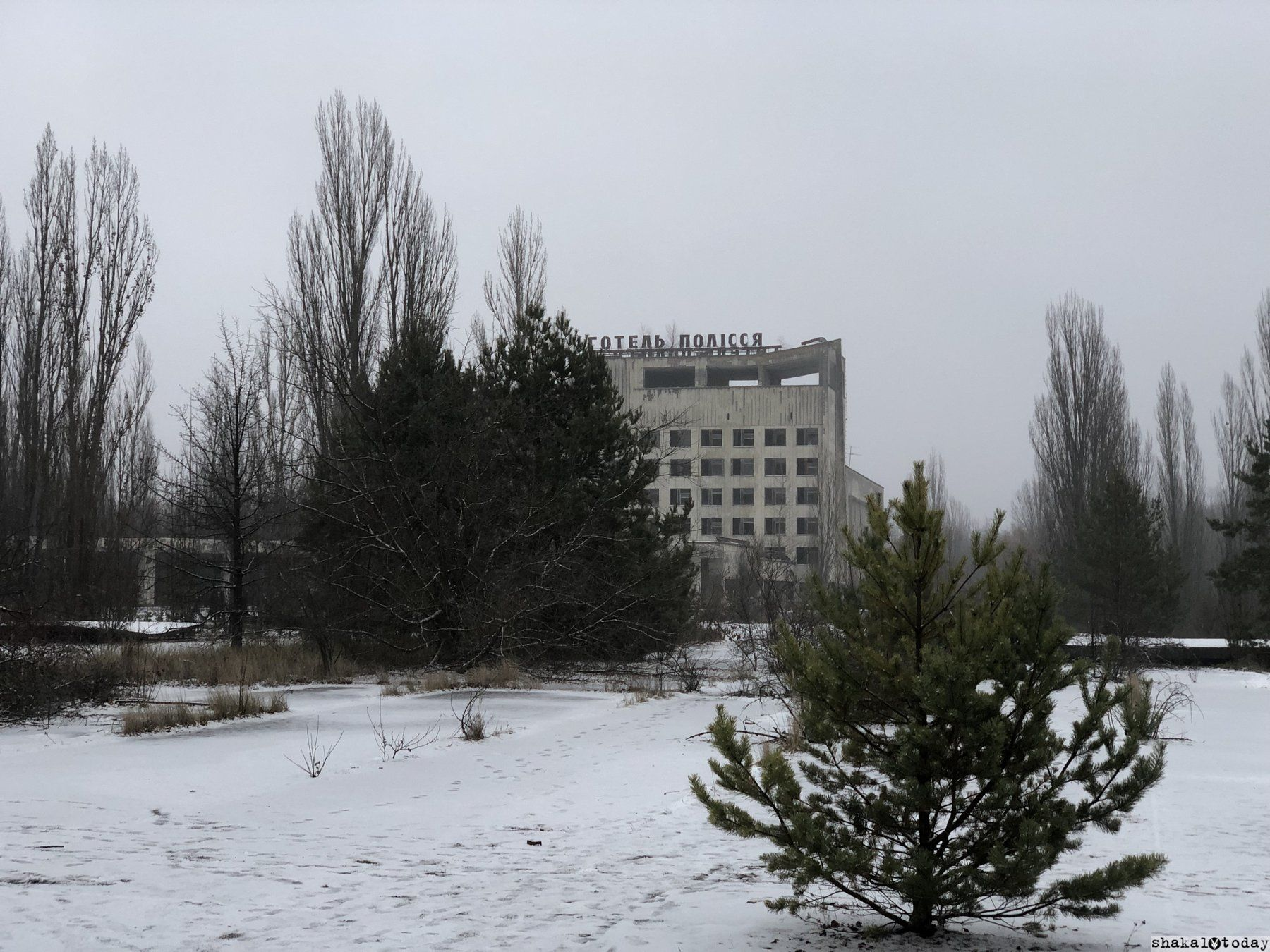 Shakal-Today-Pripyat-0013.JPG