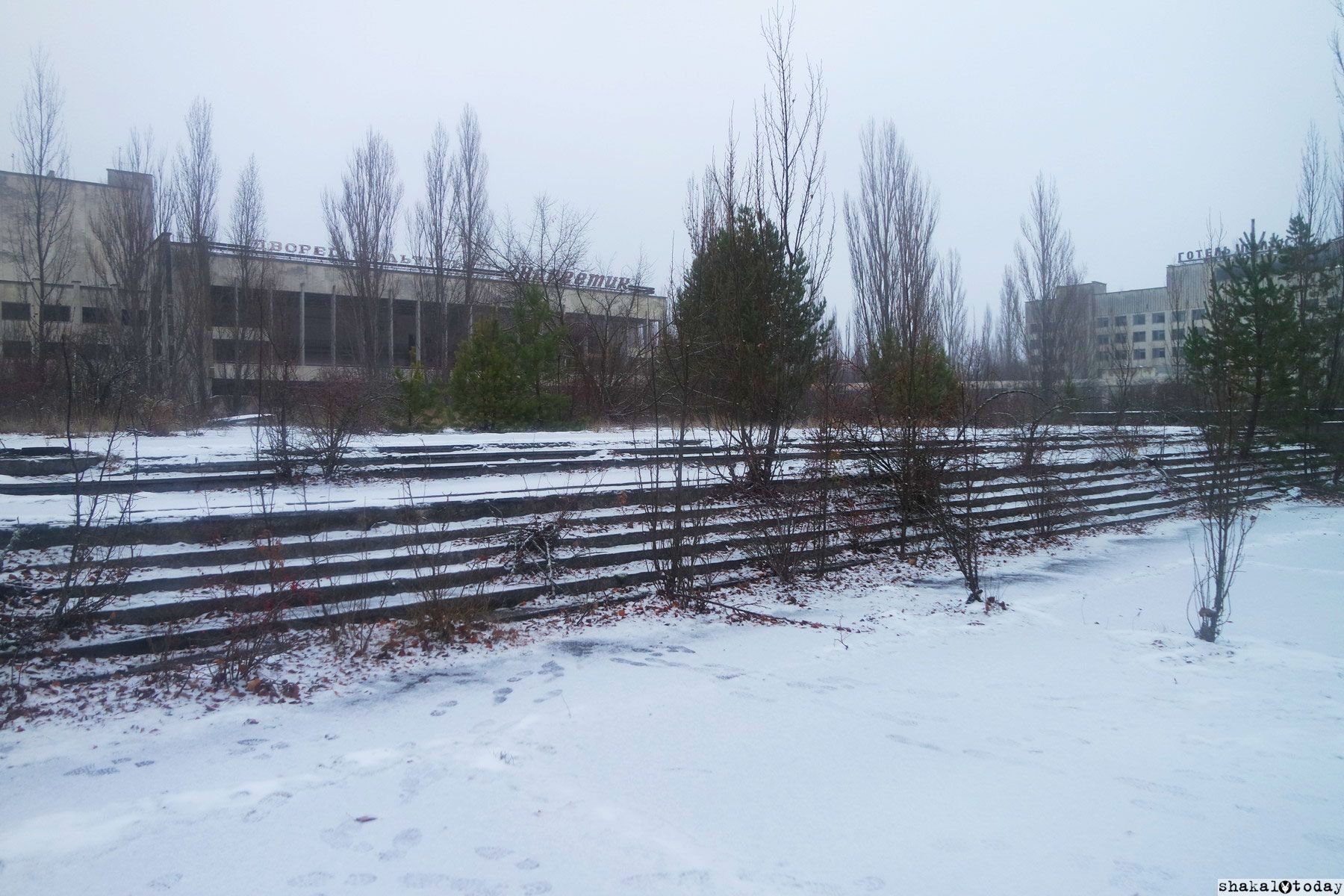 Shakal-Today-Pripyat-0051.jpg