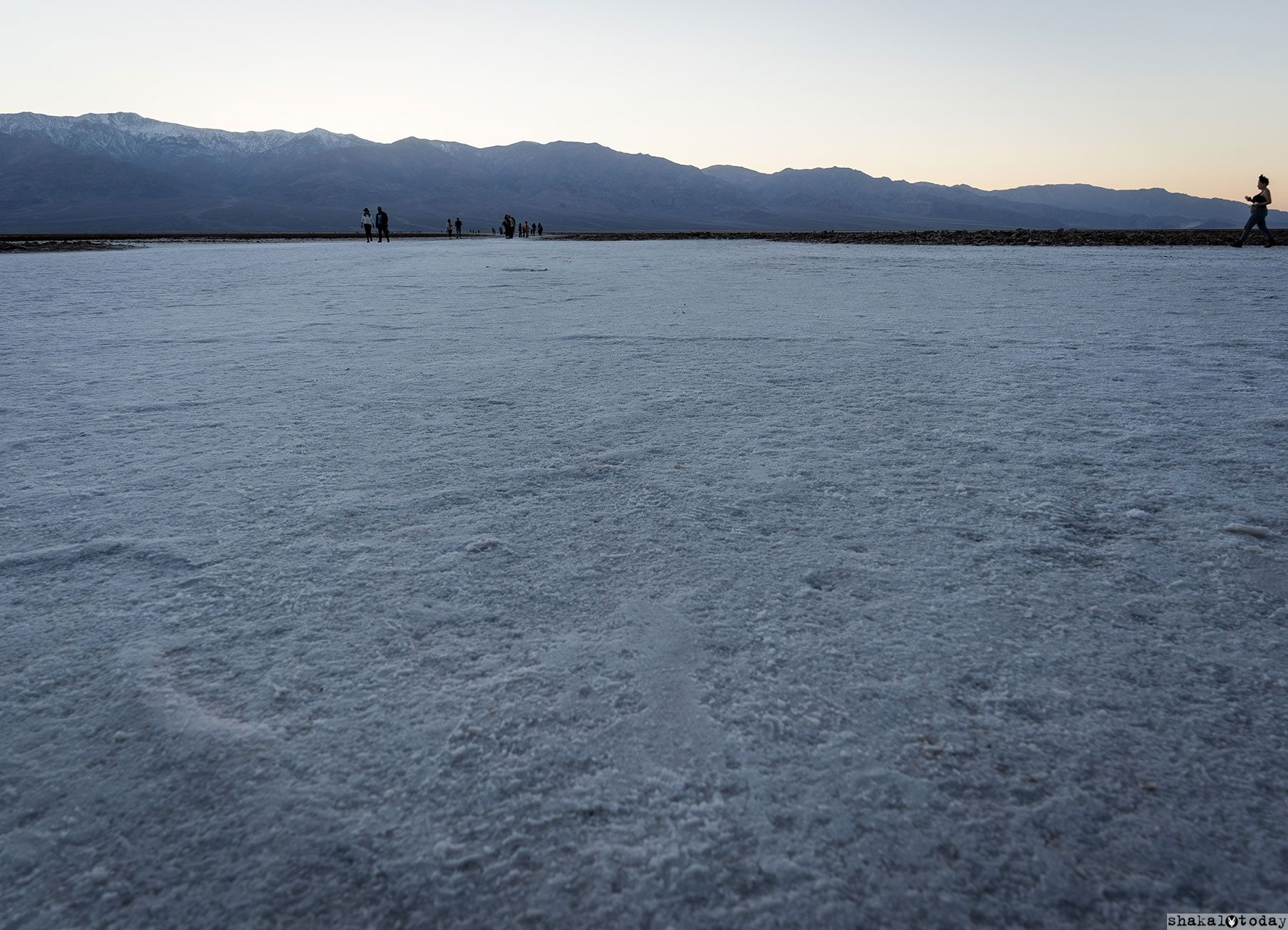 Badwater-Shakal-Today-0010.jpg