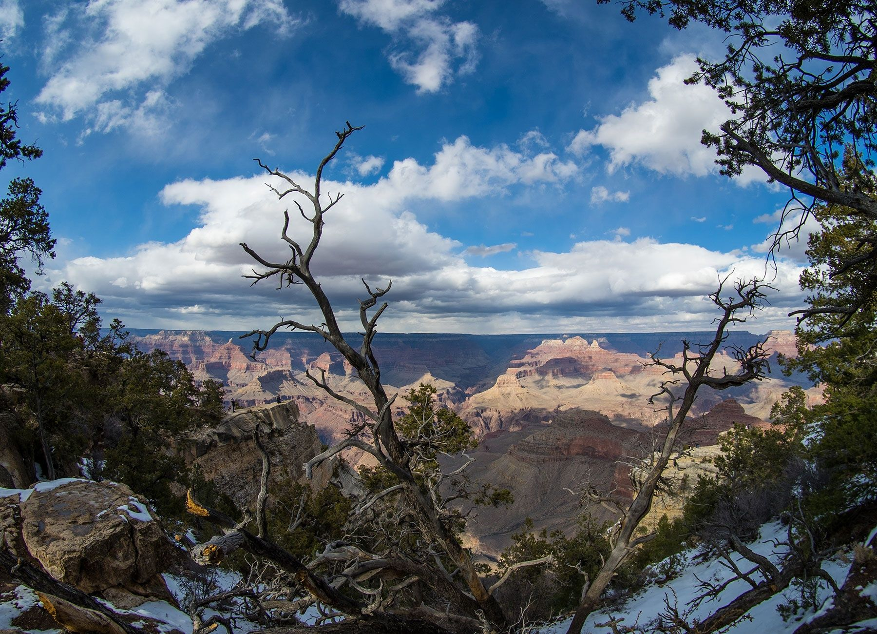 Grand-Canyon-Shakal-Today-0027.jpg