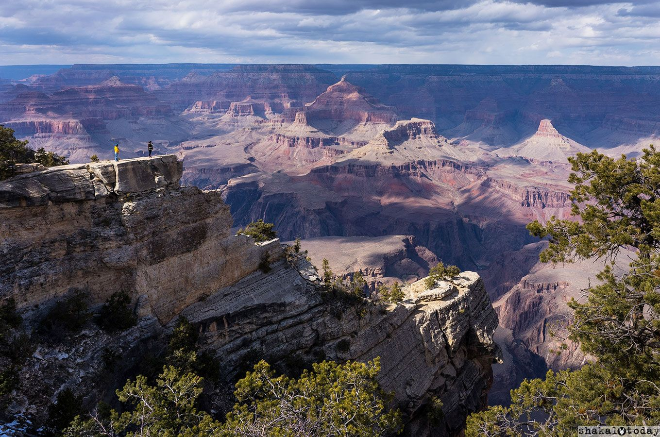 Grand-Canyon-Shakal-Today-main.jpg