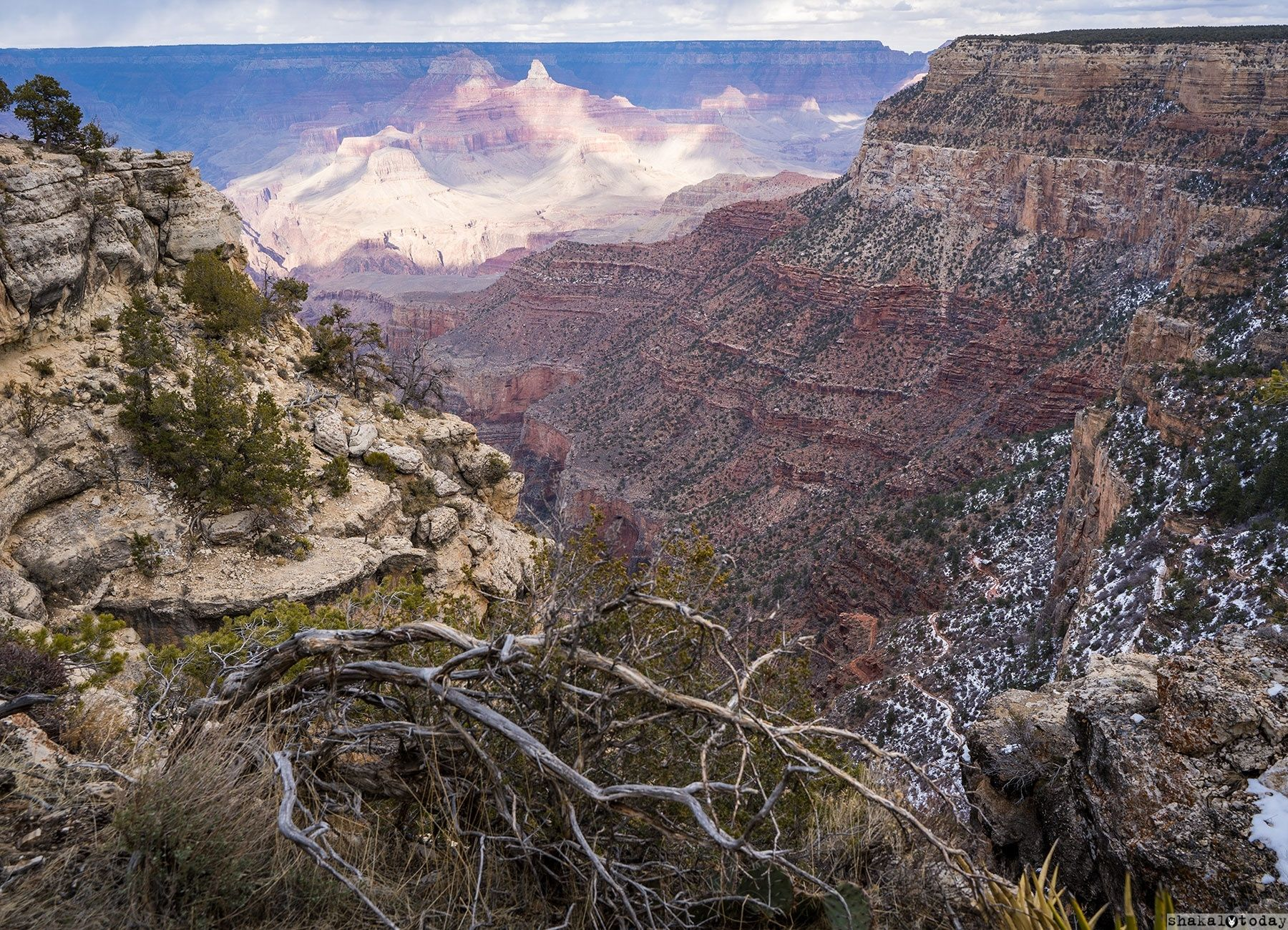 Grand-Canyon-Shakal-Today-0039.jpg