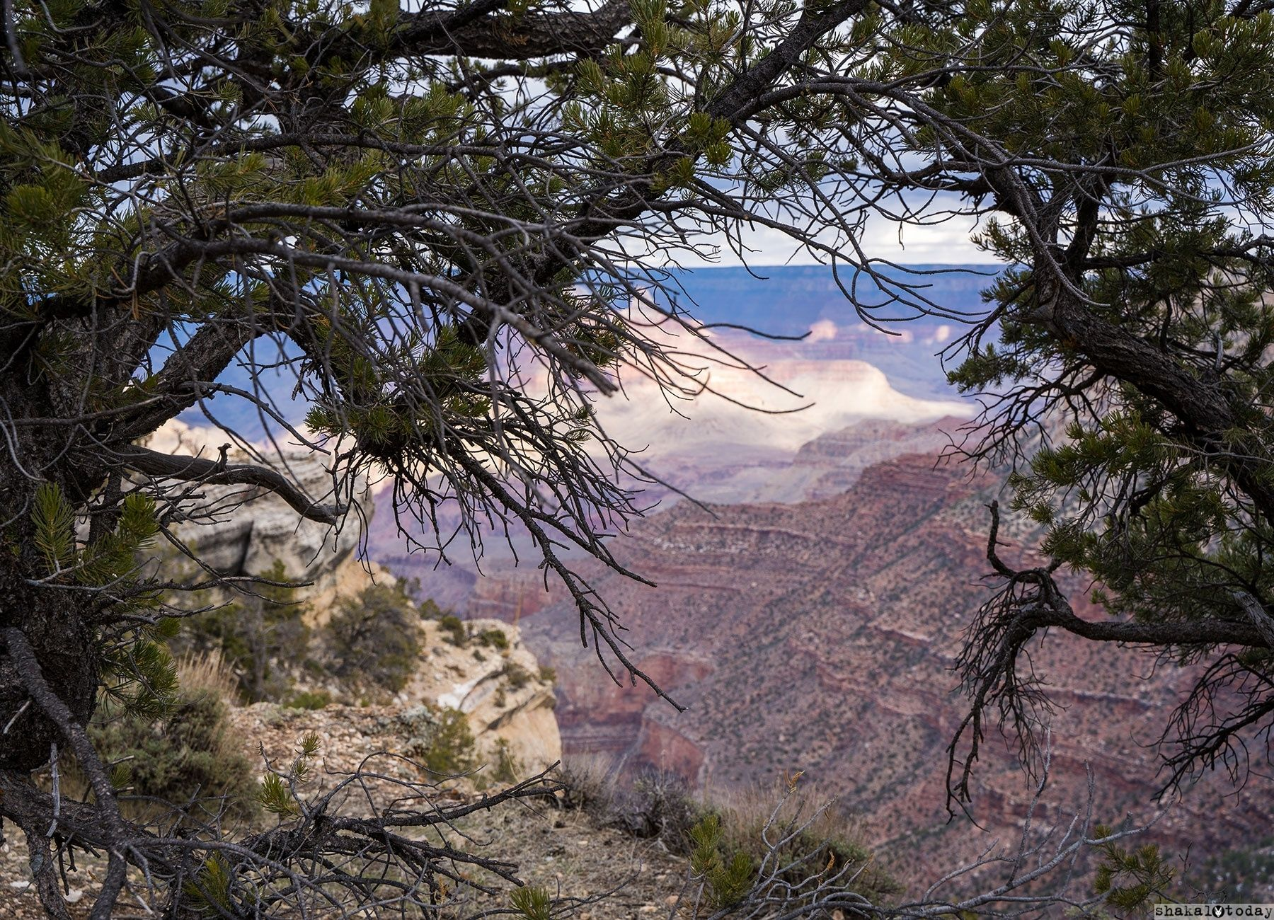 Grand-Canyon-Shakal-Today-0040.jpg